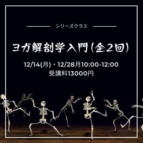 ヨガ解剖学入門(全2回) 加藤香耶