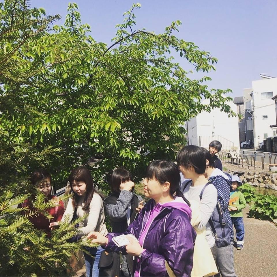 3/10(水) 旬を感じる・青空散歩~江川せせらぎ遊歩道~